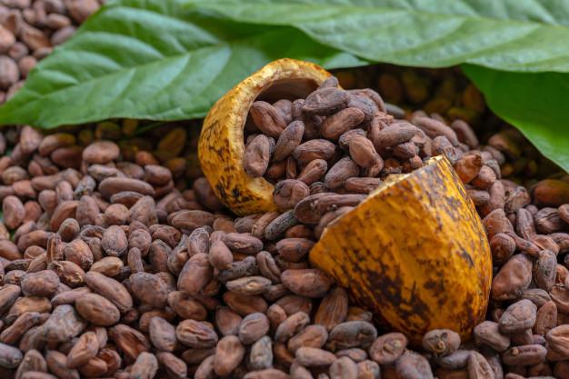 خواص پودر کاکائو
